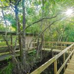 Área Protegida das Lagoas de Bertiandos e de S. Pedro d'Arcos