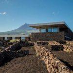 Adega da Azores Wine Company
