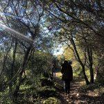 Estação da Biodiversidade de Fontelas