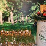 Feira Festa da Pinha e do Pinhão | Saberes e Sabores de Terras de Carregal do Sal