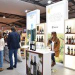 Festa da Vinha e do Vinho